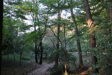 高幡城 (3)