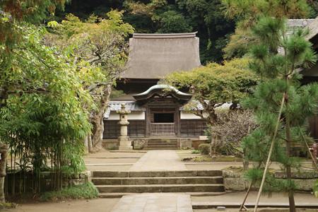 円覚寺 (5)
