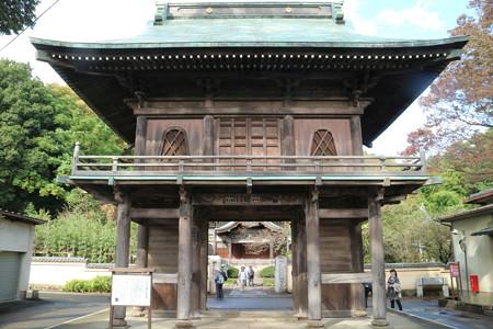武蔵国分寺 (1)