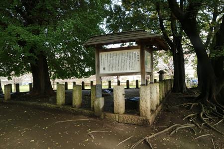 武蔵国分寺跡 (4)