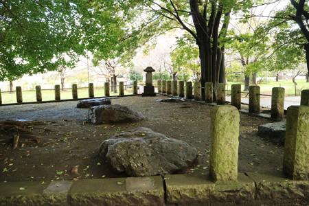 武蔵国分寺跡 (6)