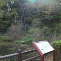 写真: 片倉城 (1)