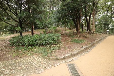 茶臼山 (1)
