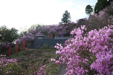 獅子崎稲荷神社 (11)
