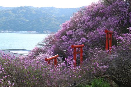 獅子崎稲荷神社 (12)