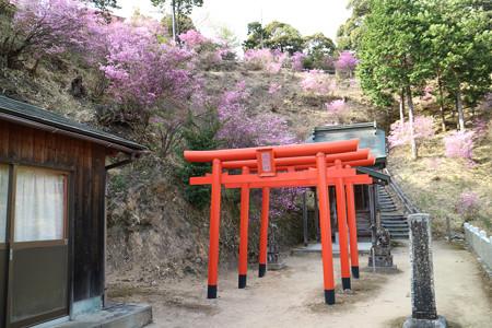 獅子崎稲荷神社 (14)