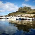 写真: 南アフリカ-18