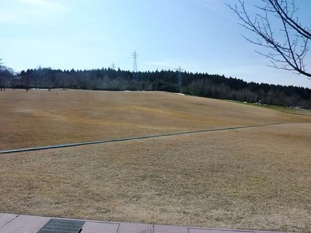 14-早春の丘陵公園