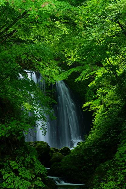 衣の滝 一番滝