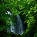 Photos: 衣の滝 一番滝