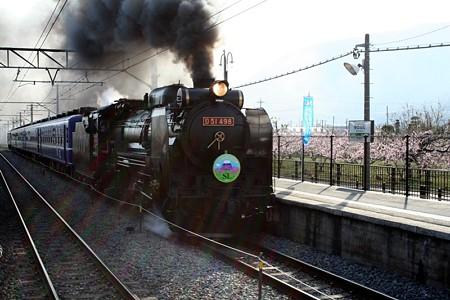 D51 498牽引・快速「SL山梨桃源郷号」
