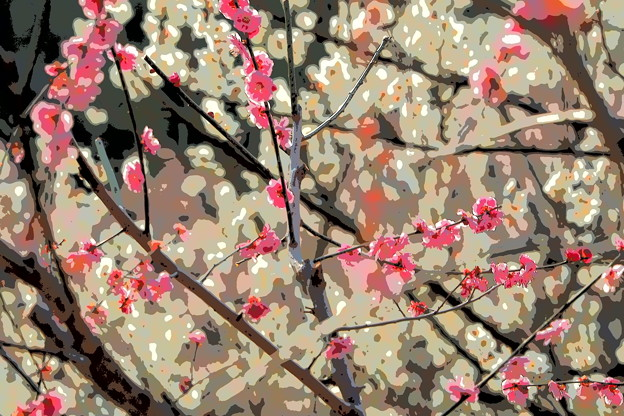 Photos: UME