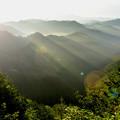 Photos: When a morning sunbeam strikes,