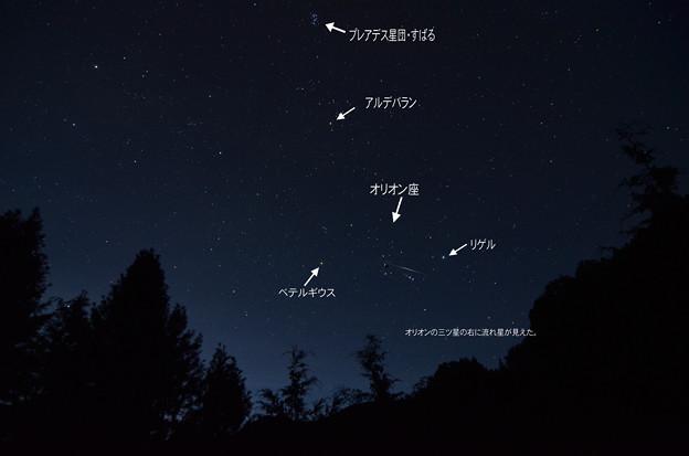 8月の東の夜空-2