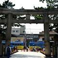 Photos: Romen Densha Hankai Tramway-13 住吉大社鳥居