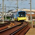 Photos: Romen Densha Hankai Tramway-18 神の木