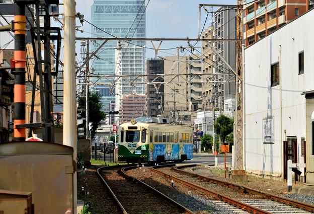 Romen Densha Hankai Tramway-20 松虫