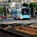Photos: Romen Densha Hankai Tramway-24 松虫