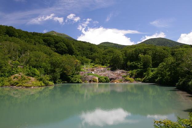 八甲田の夏