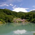 写真: 八甲田の夏