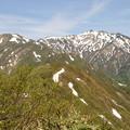 Photos: 残雪の別山