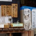 写真: 眠~い ネコの店番