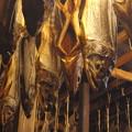 Photos: 塩引き鮭