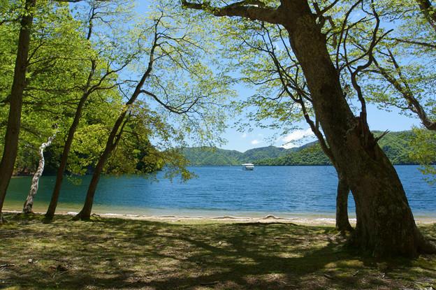 [2018年5月20日]奥日光・中禅寺湖2