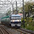 EF210-138牽引高速貨物4091レ石橋1番接近