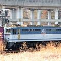 写真: 宇都宮貨物(タ)にEF65 2091号機 架線ない仕訳線にコキ5両連結留置