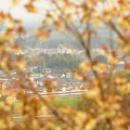 Photos: 鬱金桜とスペーシア「雅」編成