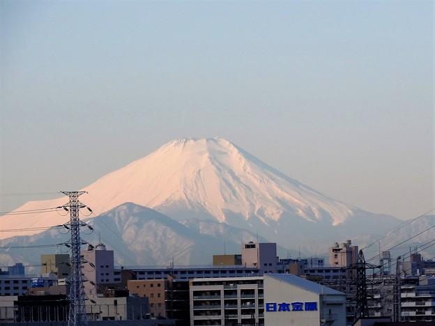 朝の新幹線車窓の富士山 なすの号大宮~上野 にて