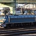 写真: EF66 30号機宇都宮貨物(タ)構内入換え