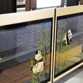 写真: 銀座線上野ホームドア