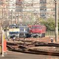 写真: 田端の機関車群(望遠)