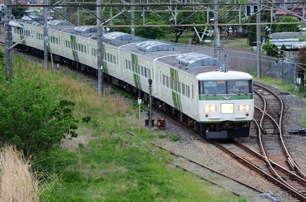 185系OM03編成臨時快速足利藤まつり4号