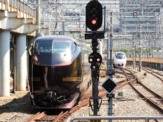 E655系「和(なごみ)」団臨上野16番発車