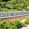 写真: 東北新幹線200系シャークノーズ2階建て
