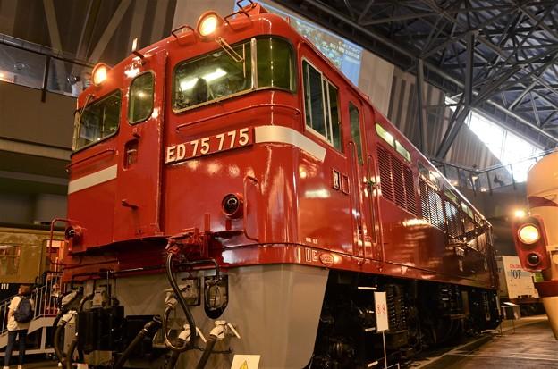 ED75 775号機
