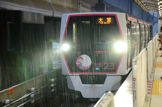 Photos: 大雨のニューシャトル鉄道博物館駅