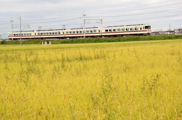 写真: 東武350系臨時特急きりふり号