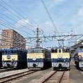 Photos: 青空と青い国鉄色電気機関車たち