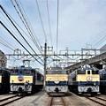 写真: 高崎鉄道ふれあいデー車両展示