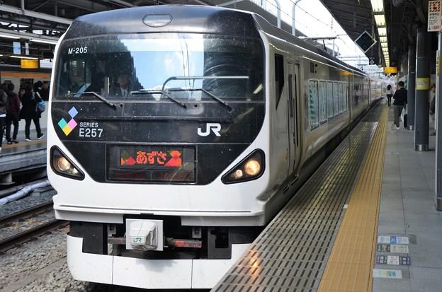 E257系特急あずさ8号新宿10番入線