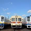 写真: 関東鉄道新守谷行き&快速下館行き