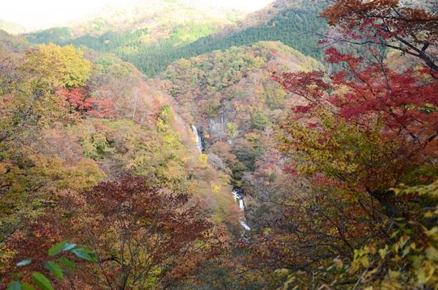 紅葉の日光霧降の滝