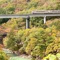 写真: 秋色の野岩鉄道線 東武6050系