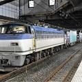 Photos: EF66 131号機代走4073レ小山11番待避