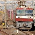 Photos: EH500-5号機牽引高速貨物3054レ小金井3番通過