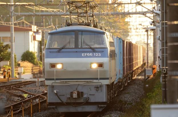 EF66 123号機代走牽引4073レ晩秋夕刻の間々田1番通過